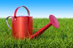 Watering can in the green grass against blue sky, 3D rendering. Watering can in the green grass against blue sky, 3D Stock Photography