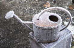 Watering can with hoar frost royalty free stock image