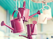 Watering can in Keukenhof garden Stock Photography