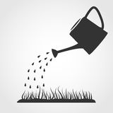 Watering can and lawn. Dark grey watering can sprays water drops above lawn Stock Images