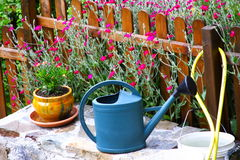 Watering-can no jardim foto de stock royalty free