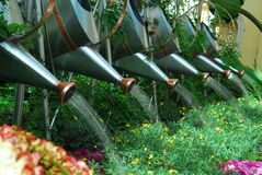 Watering Can over Plants Stock Image