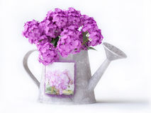 Watering-can with pink flowers Stock Image
