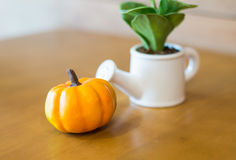 Watering can and plant with plumkin. On wooden table stock image