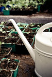Watering Can and Pots Royalty Free Stock Image