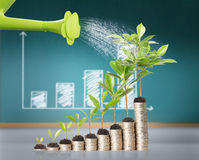 Watering can pouring molten gold. The  gold coins Stock Photography