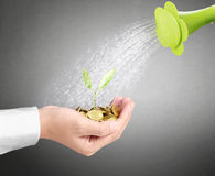 Watering can pouring molten gold gold coins Royalty Free Stock Images