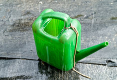Watering can in the pouring rain Royalty Free Stock Photography