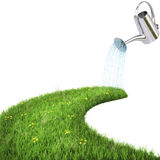 Watering can Stock Image