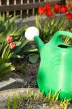 Watering can among red tulips Royalty Free Stock Photo