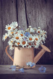 Watering can with summer bouquet of daisies flowers Royalty Free Stock Images