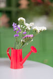 Watering can is on a table. Red watering can is on a white table Royalty Free Stock Photos