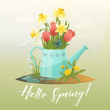 Watering can and tulip, snowdrop, narcissus flower Royalty Free Stock Images