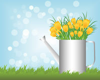 Watering can with tulips Stock Photography