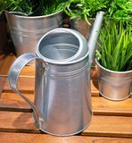 Watering Can or Watering Pot with Artificial Plant Royalty Free Stock Image