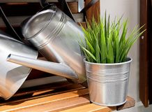 Watering Can or Watering Pot with Artificial Plants Stock Images