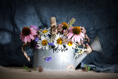Watering can with wildflowers Stock Photos