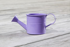 Watering can on the wooden floor. Purple watering can on the wooden floor Stock Photography
