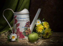 Watering can with yellow flowers and green apple on the dark background Stock Photography
