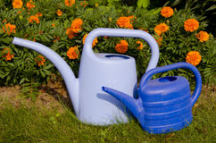 Watering cans near flowers. Stock Images