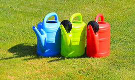 Watering cans, red, green, blue Royalty Free Stock Images