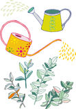 Watering cans and  spindle twigs. Watering can Stock Photos