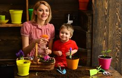 Watering concept. Mother and son hold watering spray gun together. Little child watering spring flower with mother. Watering plant by hand royalty free stock photo