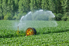 Watering in a corn field in Proissans in Perigord Stock Photos