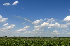 Watering corn with water cannon. During the sunny day in Vojvodina, Serbia Stock Photo