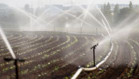 Watering crops in western Germany with Irrigation system using sprinklers in a cultivated field. stock photos