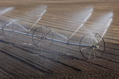 Cultivated field watering in early spring. Watering of cultivated field in early spring, irrigation equipment spraying water to land royalty free stock photos