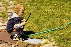 Watering The Dandelions. Young boy watering dandelions with garden hose Royalty Free Stock Photography