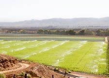 Watering fertile calif farmland Stock Photo