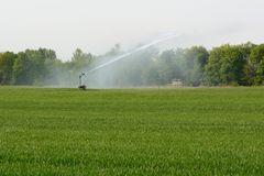 Watering a field Stock Photography