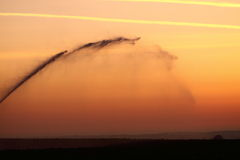 Watering field at sunrise Stock Image