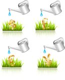 Watering Stock Image