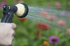 Watering flower garden Stock Image