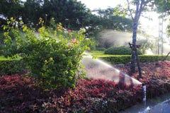 Watering flower garden Stock Photos