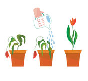 Watering flower illustration - concept of help Royalty Free Stock Photography