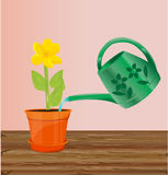 Watering  flower illustration with a yellow flower Royalty Free Stock Photo