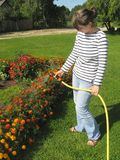Watering flowers. Young woman, watering the flowers in the yard Stock Photography