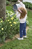 Watering the Flowers. Small red-haired girl watering the summer flowers royalty free stock photos