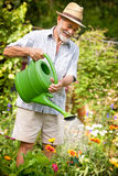 Watering the flowers in  the garden Royalty Free Stock Images