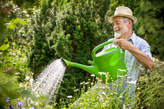 Watering flowers in  the garden Stock Photos