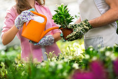 Watering flowers Royalty Free Stock Photos