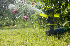 Watering garden Stock Photography