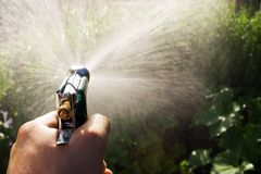Watering garden Royalty Free Stock Image