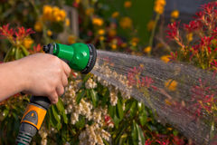 Watering the Garden Royalty Free Stock Image