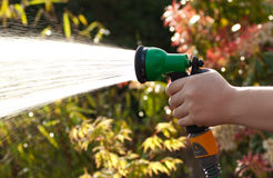 Watering the Garden. An image of a person spraying water onto garden plants and flowers with a hosepipe on a bright sunny day Stock Photography