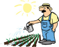 Watering the garden. A man watering the garden vector illustration Stock Images